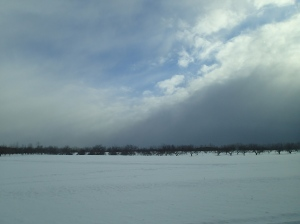 Chasing the snow front.