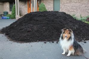 Compost mulch smells stinky good Mama!