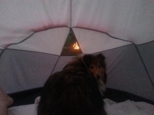 Watching the neighbor's campfire.