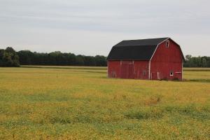 Ummm...red barn...you got the rest...