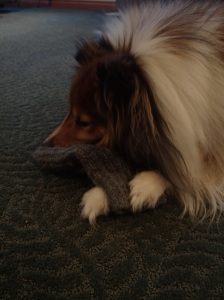 Me and Mama's mitten