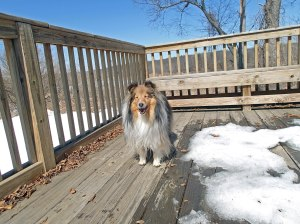 Mama likes this deck!