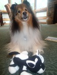 My own cow!  Thank you Reilly!