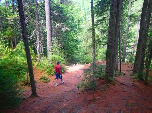 Walking in the woods.