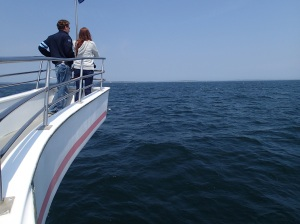 They look for whales.