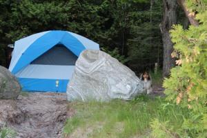 Our beautiful campsite!