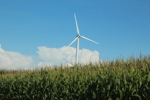 Power amid the corn,