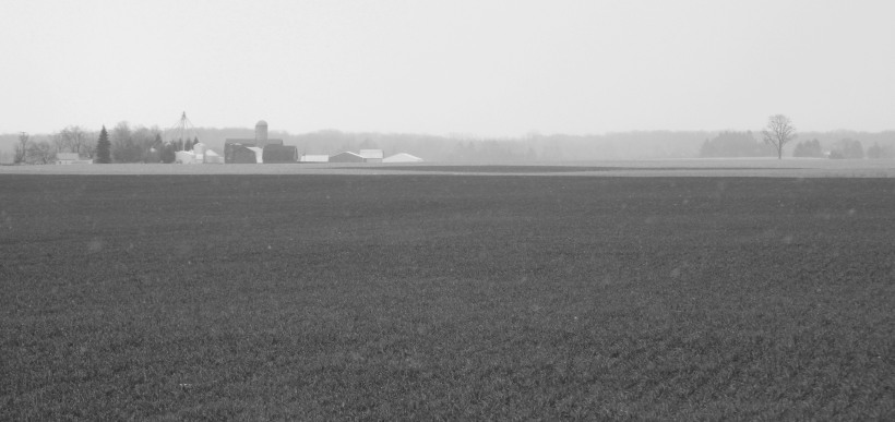 On a farm far, far away...