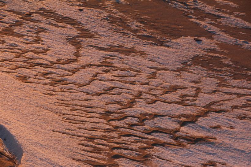 Sand ripples in rose light.