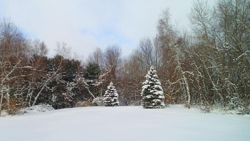 Finally winter.