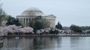 Jefferson Monument surrounded by beauty.