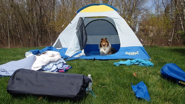 This is MY tent and MY stuff.  Mama takes care of it for me.