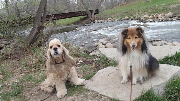 Deuce and me at his park!
