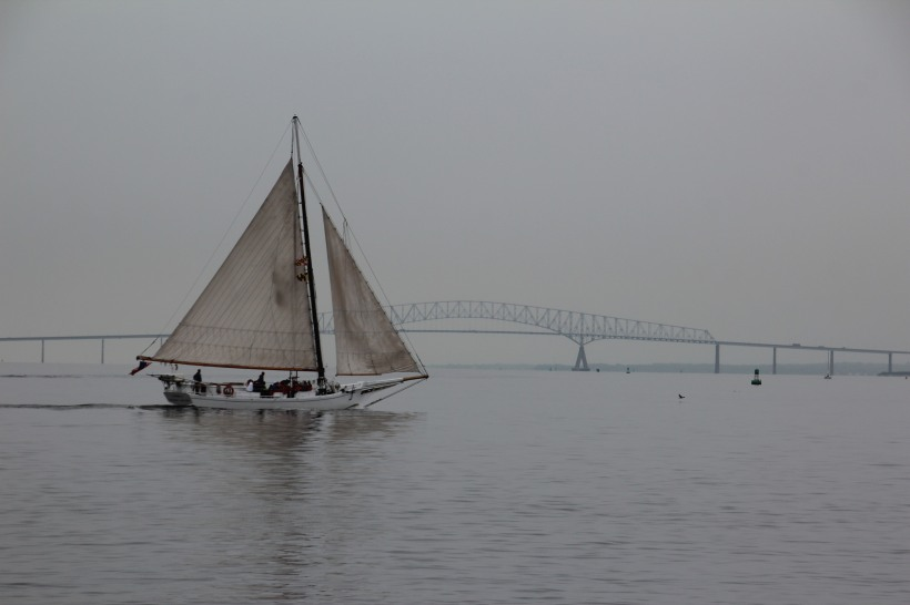 Tourists sailing on the river.