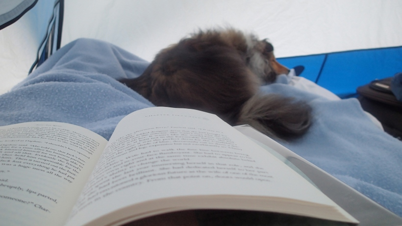 Reading is boring mama!