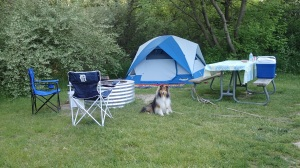 My campsite!