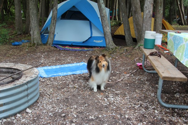 This is my campsite!