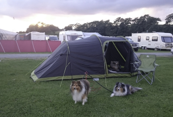 Camping is so much fun!