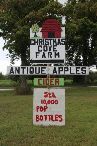 Apples, cider, and pop bottles!