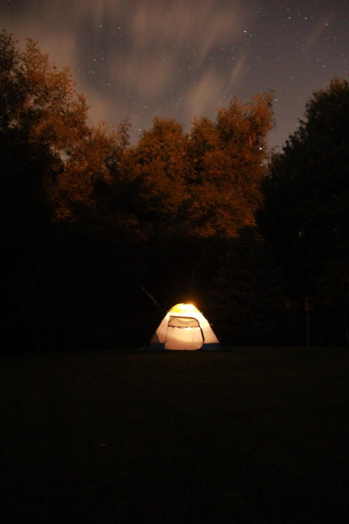 Camping in the wild back yard.