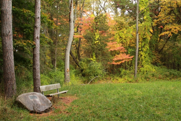 Inviting place to sit and think.