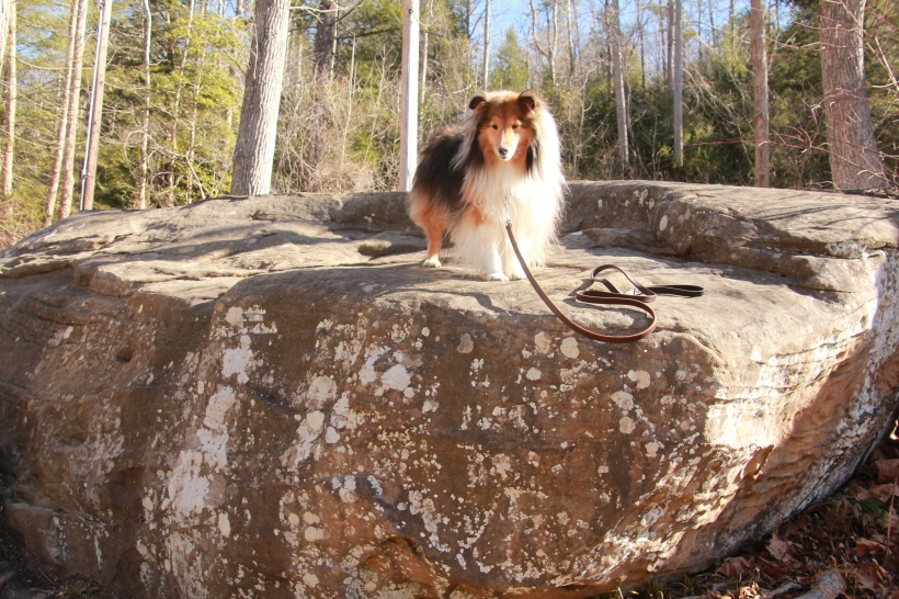 This is a really big rock mama!