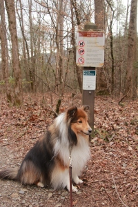 What do you mean I can't go down this trail?