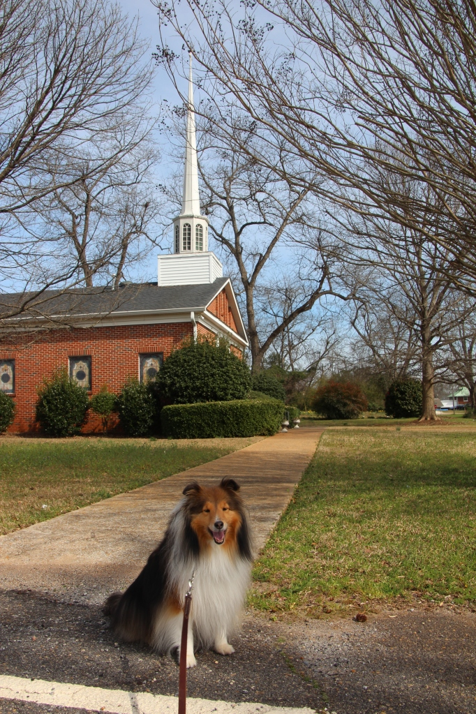 Mama says this is grandma and grandpa's church.