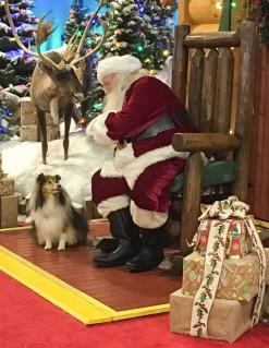 Katie and Santa
