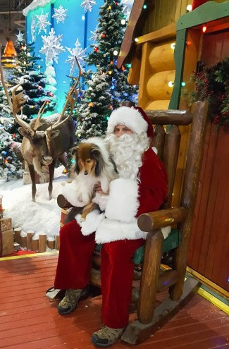 Katie Santa