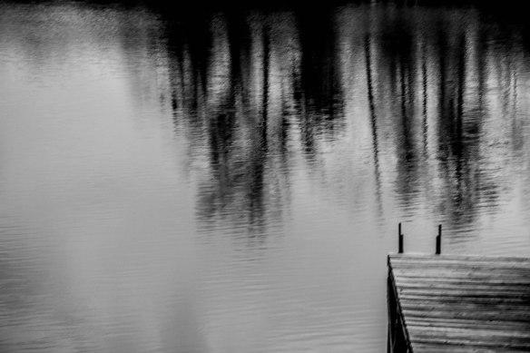 WordPress Photo Challenge: Liquid & Cee's Black and White